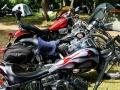 Mototoober 2013 (1).jpg